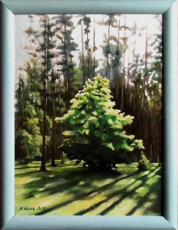 Деревце на опушке леса. Вид 3